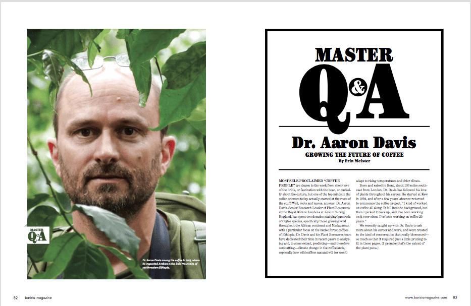 Master QA DJ17