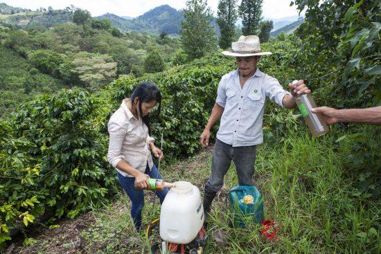 La tecnología Blockchain impulsa el café y el cacao